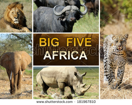 Big Five Graphic