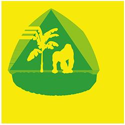 Discover Rwanda Logo